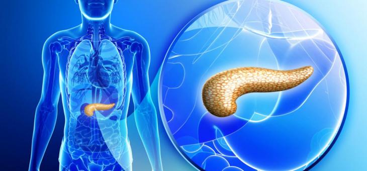 Ingerir antioxidantes diminui o risco de câncer de pâncreas